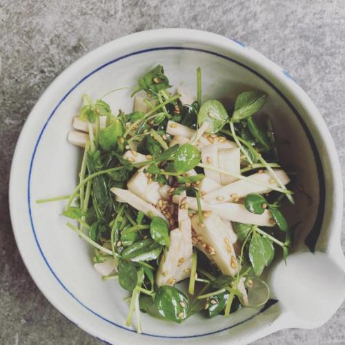 山芋と豆苗のサラダ サムネイル
